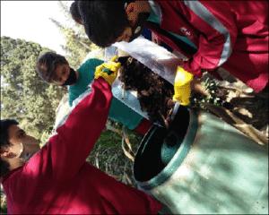 eko compost 4